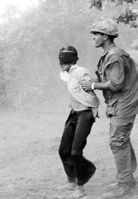 A blindfolded Viet Cong suspect and his American guard stand in the blast of a turbo jet helicopter as the prisoner waits to be removed to an interrogation site. The suspect was taken during operations on the banks of the Saigon River and through the ho bo woods in Vietnam on April 18, 1966