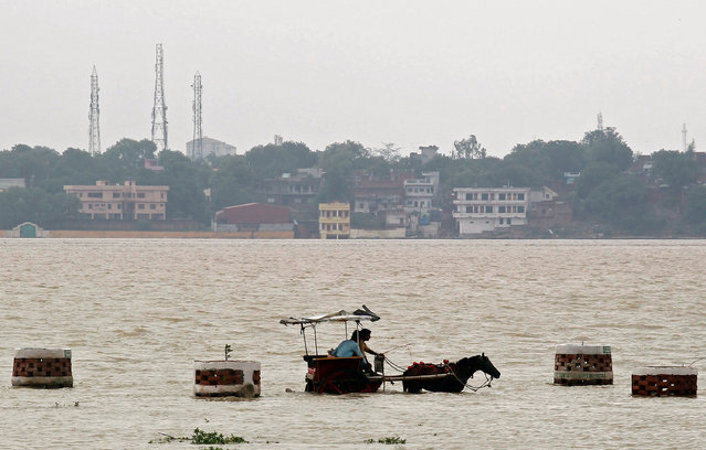 People travel on a horse drawn carriage through a flooded road on the banks of river Ganga in Allahabad, India July 10, 2016. (Photo by Jitendra Prakash/Reuters)