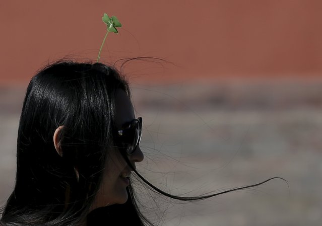 A woman wearing a clover-like hairpin makes her way in Beijing, China, September 25, 2015. (Photo by Kim Kyung-Hoon/Reuters)
