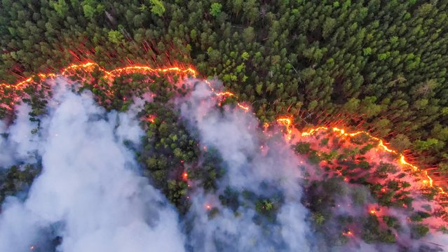 An aerial view shows a forest fire in Krasnoyarsk Region, Russia on July 17, 2020. Sweltering heat and dry weather have helped wildfires spread across Siberia and into the boreal forest and tundra that blanket northern Russia. (Photo by Julia Petrenko/Greenpeace/Handout via Reuters)