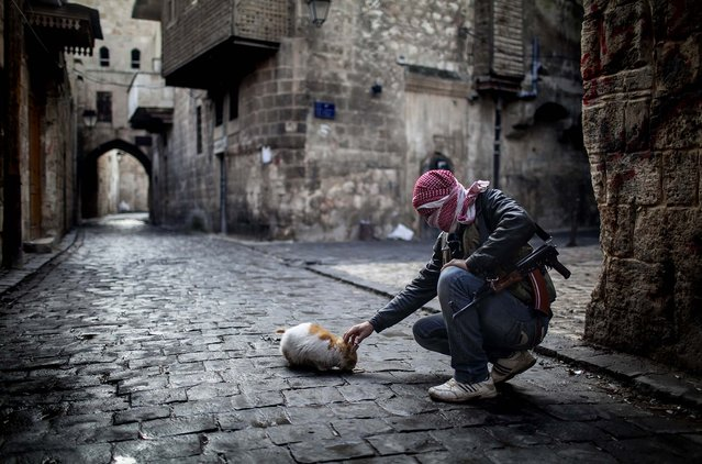 A Free Syrian Army fighter feeds a cat in the old city of Aleppo, January 6, 2013. The revolution against Syrian President Bashar Assad that began in March 2011 started with peaceful protests but morphed into a civil war that has killed more than 60,000 people, according to a recent United Nations recent estimate. (Photo by Andoni Lubaki/Associated Press)
