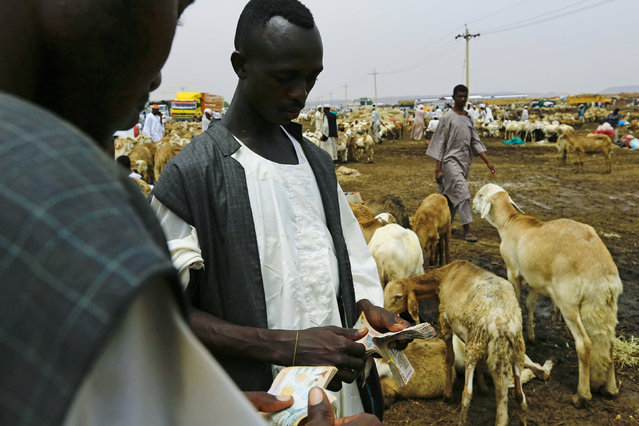 Vendors count money at a sheep market during preparations ahead of the Eid al-Adha festival in Khartoum September 11, 2016. (Photo by Mohamed Nureldin Abdallah/Reuters)
