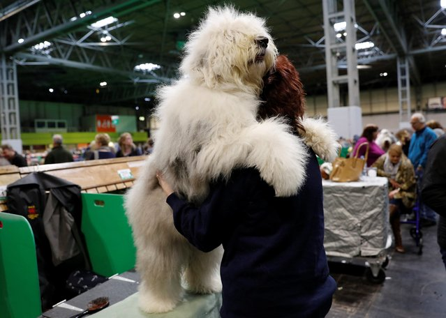 A woman cuddles an Old English sheepdog during the Crufts Dog Show in Birmingham, Britain March 8, 2018. (Photo by Darren Staples/Reuters)