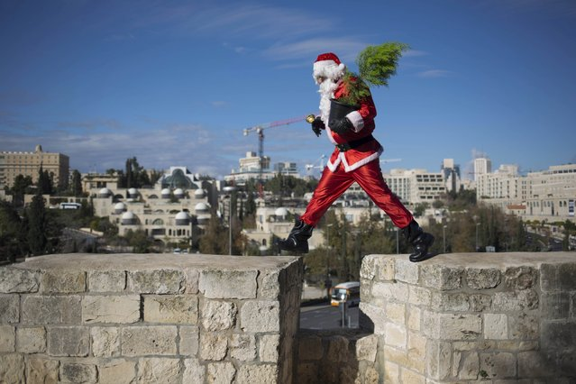 Issa Kassissieh, an Israeli-Arab Christian, wears a Santa Claus costume as he poses for the media in Jerusalem's Old City, during the annual distribution of Christmas trees by the Jerusalem municipality December 22, 2014. (Photo by Dusan Vranic/AP Photo)