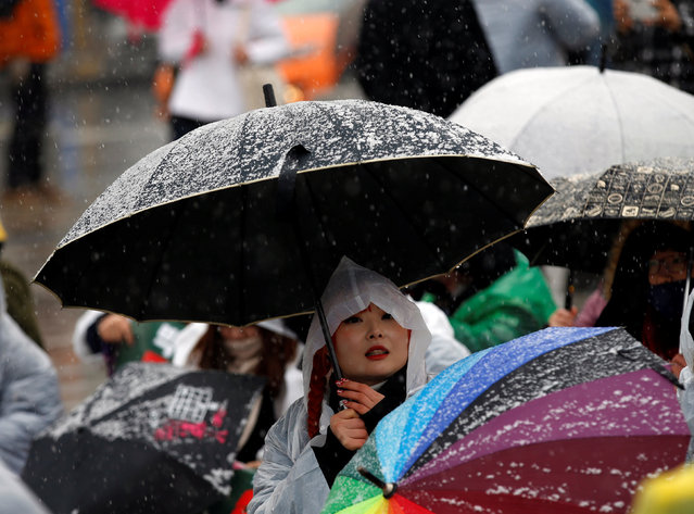 A protester holds an umbrella at a protest calling for South Korean President Park Geun-hye to step down, as it snows in Seoul, South Korea, November 26, 2016. (Photo by Kim Kyung-Hoon/Reuters)