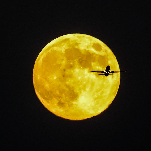 "Photographer Stephen Rahn took this photo of the moon with an airliner in front of it on September 18, 2013. He writes: ""I was at my parents' house this evening when my dad and I saw the Moon coming up. I set up the tripod and … he noticed all these planes flying near the Moon. He helped spot for me, and I managed to get this"". (Photo by Stephen Rahn)"