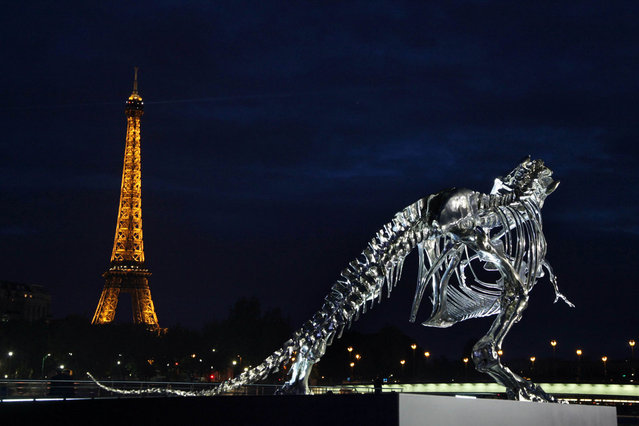 A giant chrome brushed aluminium skeleton of a Tyrannosaurus (T-Rex) dinosaur (R), made by French sculptor and painter Philippe Pasqua, stands at the pier of riverboat company Bateaux-Mouches on June 12, 2013 in Paris, with the Eiffel tower in the background (L). (Photo by Claire Lebertre/AFP Photo)