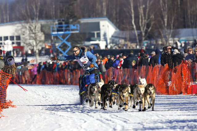 Rookie Larry Daugherty's team leaves the start chute at the restart of the Iditarod Trail Sled Dog Race in Willow, Alaska March 6, 2016. (Photo by Nathaniel Wilder/Reuters)