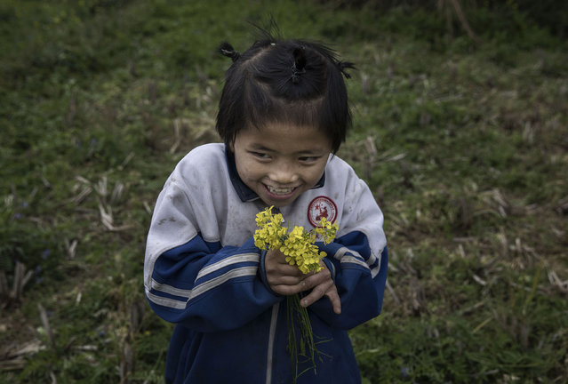 """""""Left behind"""" child Luo Hongniu, 8, holds flowers she picked while doing chores on December 18, 2016 in Anshun, China. (Photo by Kevin Frayer/Getty Images)"""