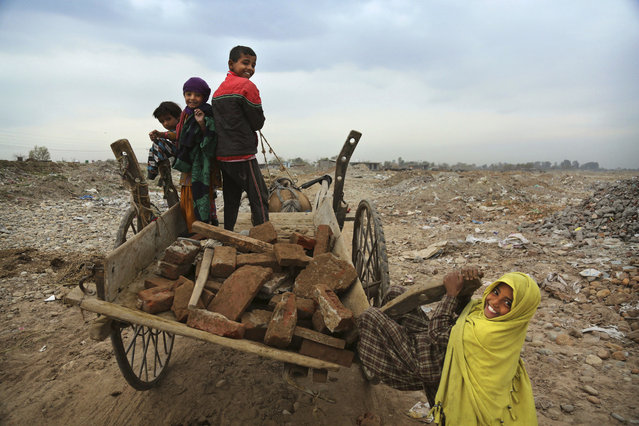 An Indian nomadic Gujjar girl hangs on to a horse cart after collecting bricks from debris on the outskirts of Jammu, India, Tuesday, March 7, 2017. The Gujjar tribal communities are considered by some to be economically and socially backward and the lack of care by the state government has led to resentment amongst the community. The tribe moves to the plains from the hills to escape the cold winters. (Photo by Channi Anand/AP Photo)