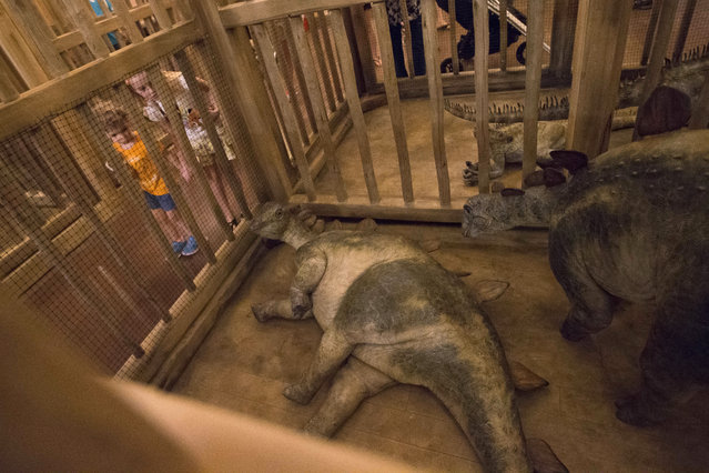 Children look into a cage containing model baby dinosaurs inside a replica Noah's Ark at the Ark Encounter theme park during a media preview day, Tuesday, July 5, 2016, in Williamstown, Ky. (Photo by John Minchillo/AP Photo)