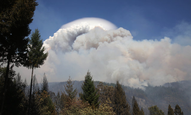 Smoke from a wildfire rises into the sky near Pollack Pines, Calif., Monday, September 15, 2014. The fire, which started Sunday has consumed more than 3,000 acres and forced the evacuation of dozens of homes. (Photo by Rich Pedroncelli/AP Photo)
