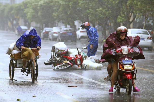 A motorcycle (C) falls on the street as residents ride their vehicles against strong wind and heavy rainfall under the influence of Typhoon Kalmaegi, in Haikou, Hainan province September 16, 2014. Typhoon Kalmaegi brought gusts of up to 125km/h (78 mph) in the past hour as it swept past on its way towards China's Guangdong province and Hainan Island after it plunged northern parts of the Philippines into darkness and inundated farmland. (Photo by Reuters/Stringer)