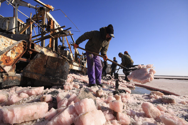Laborers work at a salt production site at the Sasyk-Sivash lake near the city of Yevpatoria in Crimea, October 5, 2014. (Photo by Pavel Rebrov/Reuters)