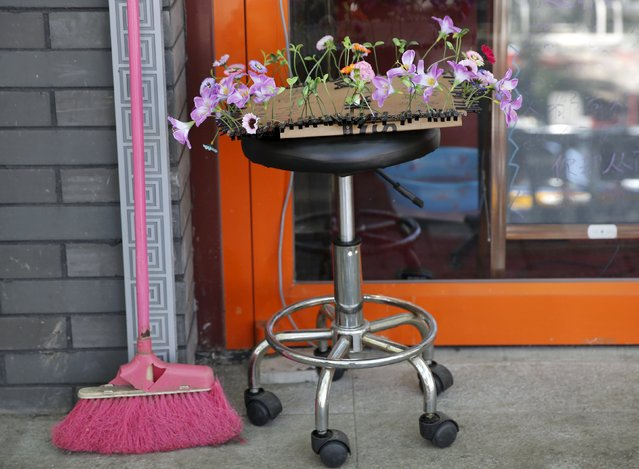 Antenna styled hairpins in the shape of various flowers and plants are placed on a chair at a store in Beijing, China, September 25, 2015. (Photo by Kim Kyung-Hoon/Reuters)