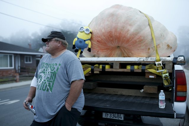 Ron Root, of Citrus Heights, stands next to his pumpkin during the annual Safeway World Championship Pumpkin Weigh-off in Half Moon Bay, California October 12, 2015. (Photo by Stephen Lam/Reuters)