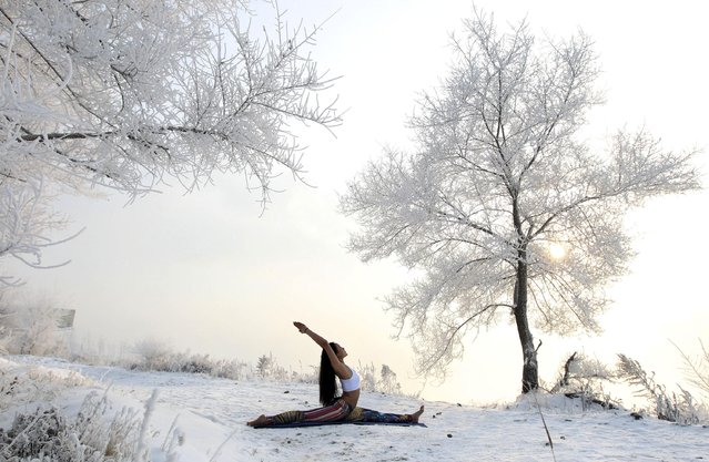 Xie Xiaoming, 26-year-old owner of a yoga club, practices yoga in thin clothes near trees covered by frosty fog on the snow-covered banks of Songhua River in Jilin, Jilin province December 17, 2014. Xie has been practicing yoga for over six years. The temperature near the river reached -30 degrees Centigrade (-22 degrees Fahrenheit) on Wednesday, local media reported. (Photo by Reuters/Stringer)