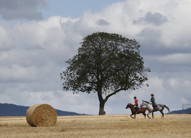 Two girls ride on their horses near Frankfurt, Germany, Tuesday, July 28, 2015. (Photo by Michael Probst/AP Photo)