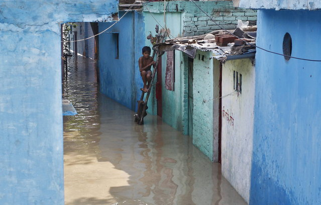 A boy sits on a ladder next to his flooded house with the rising water level of river Yamuna after heavy monsoon rains in New Delhi June 19, 2013. The rains are at least twice as heavy as usual in northwest and central India as the June-September monsoon spreads north, covering the whole country a month faster than normal. (Photo by Anindito Mukherjee/Reuters)