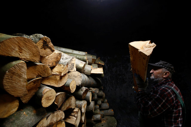 """Charcoal burner Zygmunt Furdygiel loads wood into a charcoal furnace at a charcoal making site, in the forest of Bieszczady Mountains, near the village of Baligrod, Poland October 27, 2016. In a Polish mountain forest, Zygmunt Furdygiel spends four hours loading logs of beech wood into a large furnace, then lights up the pile and leaves the wood to burn. """"It smokes for two days then cools for another two days"""", the 69-year-old said. """"On the fifth day, I take out the charcoal"""". Furdygiel has worked as a charcoal burner for more than 40 years, turning wood into the black carbon. He is one of just a few charcoal burners still operating in the Bieszczady mountain range of southeastern Poland, regularly piling wood into some four furnaces, known as """"retorts"""". According to the regional office for Poland's national forests, just 16 years ago there were more than 50 such charcoal burning bases in Bieszczady equipped with more than 600 retorts. Today there are fewer than 10 with around 40 retorts due to cheaper imports from neighbouring countries such as Ukraine. (Photo by Kacper Pempel/Reuters)"""