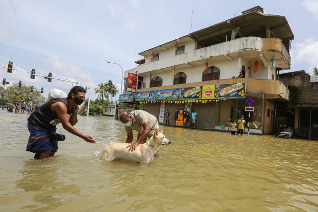 Sri Lankans wash their dog on the flooded road after heavy rainfall in Kelaniya suburb of Colombo, Sri Lanka, 06 June 2021. Many parts of the island have been inundated due to heavy monsoon rains. According to the Sri Lanka Disaster Management Center, at least 14 people have been killed so far and more than 245,212 people affected across the country. (Photo by Chamila Karunarathne/EPA/EFE)