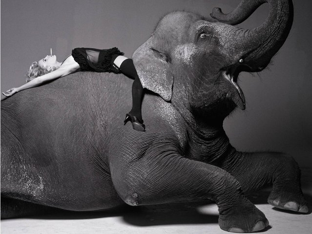 """Art photography gallery Lumas has opened its doors to """"Masterpieces of Fashion Photography"""" exhibition at its London flagship space, showcasing previously unreleased images by legends such as Horst P. Horst, Edward Steichen, Bert Stern and Arthur Elgort. Here: Darryl Hannah on elephant, 1992. (Photo by Michel Comte/Vogue Archive Collection)"""