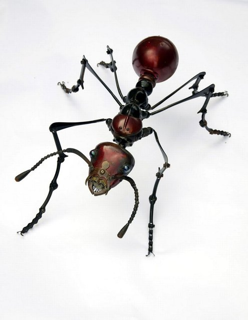 An ant by Edouard Martinet. (Photo by Edouard Martiniet/Caters News)