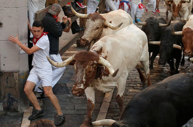 A reveller shies away from a steer during the running of the bulls at the San Fermin festival in Pamplona, Spain, July 11, 2019. (Photo by Jon Nazca/Reuters)