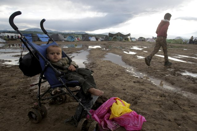 A baby is seen in its baby carriage following heavy rainfall at a makeshift camp for migrants and refugees at the Greek-Macedonian border near the village of Idomeni, Greece, April 24, 2016. (Photo by Alexandros Avramidis/Reuters)