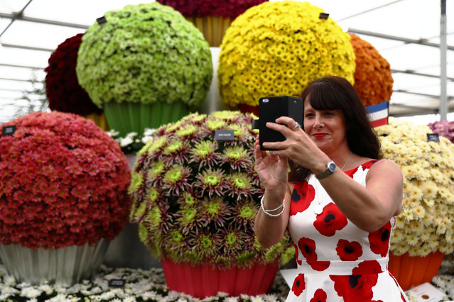 A woman in a poppy design dress photographs a display at the RHS Chelsea Flower Show in London, Britain, May 23, 2017. (Photo by Neil Hall/Reuters)