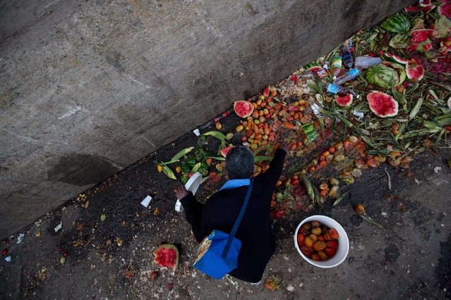 In this May 31, 2016 photo, Pedro Hernandez culls through discarded tomatoes from the trash area of the Coche public market in Caracas, Venezuela. At Coche, even once middle class Venezuelans made desperate by the country's economic collapse have taken to sifting through the trash to resell or feed themselves on discarded fruits and vegetables. (Photo by Fernando Llano/AP Photo)