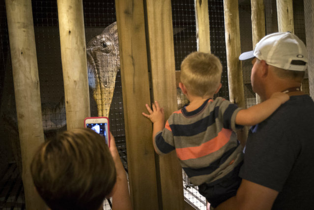 Visitors observe a diorama depicting a caged dinosaur inside a replica Noah's Ark at the Ark Encounter theme park during a media preview day, Tuesday, July 5, 2016, in Williamstown, Ky. (Photo by John Minchillo/AP Photo)