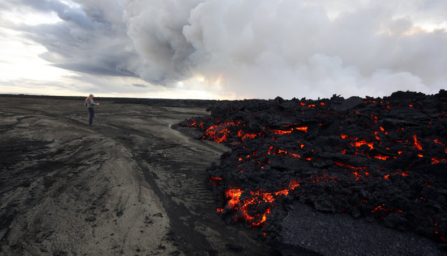 A man stands near to a lava eruption on Holuhraun, northwest of the Dyngjujoekull glacier in Iceland, Monday, September 1, 2014. Lava fountains danced along a lengthy volcanic fissure near Iceland's subglacial Bardarbunga volcano Sunday, prompting authorities to raise the aviation warning code to the highest level and close the surrounding airspace. (Photo by Eggert Johannesson/AP Photo)