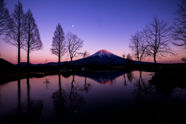 """Fuji of dusk"". The stars shined most at dusk of Mount Fuji. Photo location: Fumotoppara. (Photo and caption by Kenichi Sunata/National Geographic Photo Contest)"