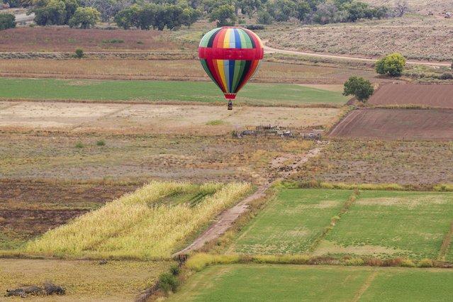 A hot air balloon floats over a field during the 2015 Albuquerque International Balloon Fiesta in Albuquerque, New Mexico, October 5, 2015. (Photo by Lucas Jackson/Reuters)