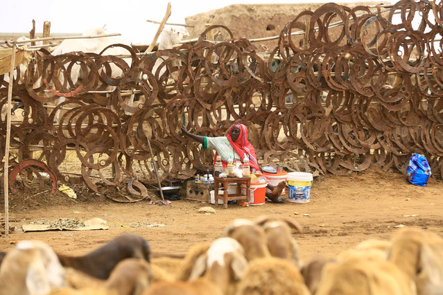 A tea vendor waits for customers at a sheep market during preparations ahead of the Eid al-Adha festival in Khartoum September 11, 2016. (Photo by Mohamed Nureldin Abdallah/Reuters)