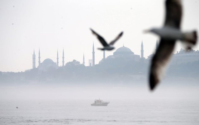 A boat is seen with flying seagulls as the mist blankets the city at Bosphorus during early evening in Istanbul, Turkey on May 14, 2020. (Photo by Erhan Sevenler/Anadolu Agency via Getty Images)
