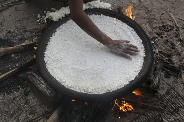 """An indigenous woman from the Kamayura tribe prepares their traditional food """"Beijou"""" which is made from manioc, in their village at the Xingu national park in Mato Grosso, Brazil, October 4, 2015. (Photo by Paulo Whitaker/Reuters)"""