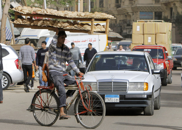 An Egyptian bread vendor rides his bicycle in downtown Cairo, Egypt, Saturday, March 16, 2013. Owners of state-subsidized bakeries protested Saturday against changes to the distribution system of subsidized wheat. It comes amid economic reforms the government is seeking to implement to boost the economy and ensure subsidized bread reaches millions of poor Egyptians who complain that the bakeries sell the wheat for a profit. (Photo by Amr Nabil/AP Photo)