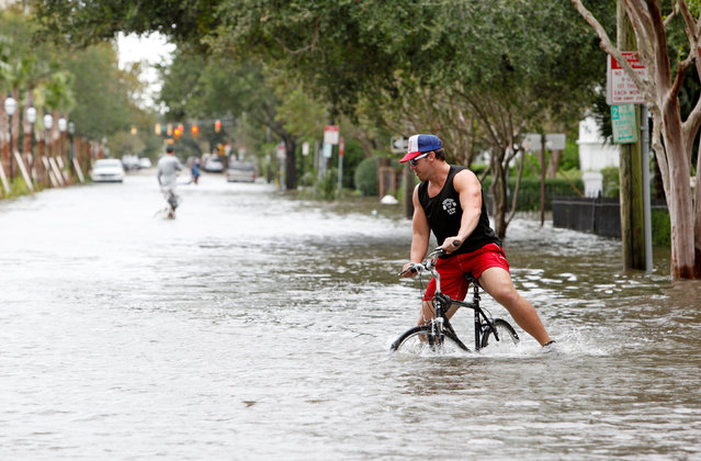 A man tries to ride his bicycle in the knee-high flood waters on Rutledge Avenue after Hurricane Matthew hit Charleston, South Carolina October 8, 2016. (Photo by Jonathan Drake/Reuters)