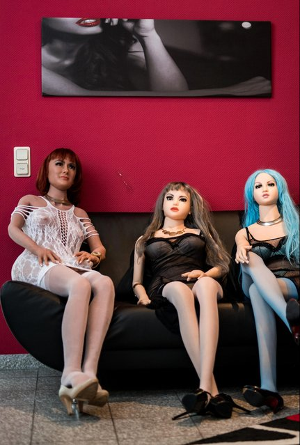 """Silicon s*x dolls for sexual encounters sitting at the """"Bordoll"""" brothel on April 17, 2019 in Dortmund, Germany. (Photo by Lukas Schulze/Bongarts/Getty Images)"""