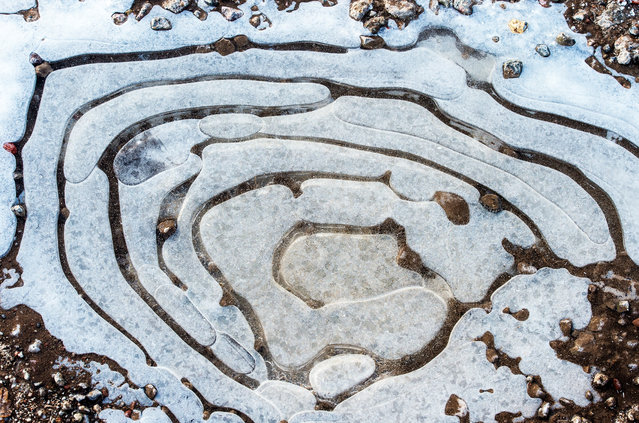 View on a frozen puddle in Sieversdorf, Germany, 27 December 2014. Germany saw the onset of winter the same day with snowfall, forecasted to continue over the next days and cause slippery conditions. (Photo by Patrick Pleul/EPA)