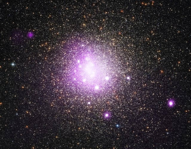 Researchers have found evidence that a white dwarf star may have ripped apart a planet as it came too close, as seen in this NASA Chandra X-ray Observatory image of a globular cluster designated as NGC 6388 released April 17, 2015. Using several telescopes, researchers have found evidence that a white dwarf star, the dense core of a star like the Sun that has run out of nuclear fuel may have ripped apart a planet as it came too close. (Photo by Reuters/NASA)