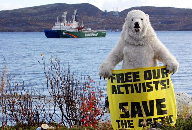 """A handout picture taken on September 24, 2013, an provided by Greenpeace International shows a Greenpeace activist dressed as a polar bear holding a banner in front of the Arctic Sunrise Greenpeace's Arctic protest ship (back R) moored next to Russian Coast Guard ship (back L) in Kola Bay at the military base Severomorsk on the Kola peninsula near Murmansk. The poster reads: """"Free Our Activists, Save The Arctic"""". Russia opened yesterday a criminal probe into suspected piracy by both foreign and local activists from Greenpeace who staged a protest at sea over Arctic oil exploration by energy giant Gazprom. (Photo by Igor Podgorny/AFP Photo/Greenpeace)"""