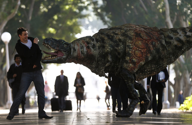 A man reacts as a performer dressed in a Tyrannosaurus rex dinosaur costume walks next to him during a publicity event in central Sydney August 28, 2013. (Photo by Daniel Munoz/Reuters)