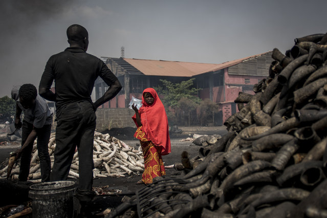 A girl stands in front of cow horns at Kaduna Abatour meat market in North Kaduna on February 25, 2019 as Nigeria awaits results from its presidential election, as civil society groups warned that disorganisation and violence may have undermined the polls. Results from February 23, 2019 vote were expected to trickle in to Abuja after being collated at the state and local levels. (Photo by Cristina Aldehuela/AFP Photo)