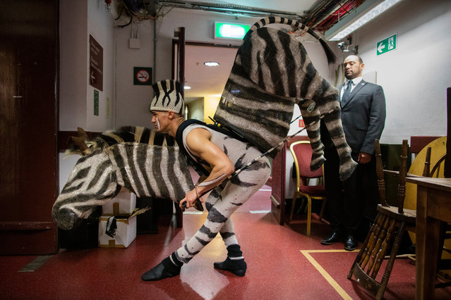Etian, playing a zebra from The Lion King, stretches before going on stage during The Olivier Awards 2019 with Mastercard at the Royal Albert Hall on April 07, 2019 in London, England. (Photo by David Levene/The Guardian)