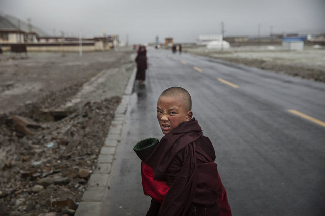 A young Tibetan monk walks on a road on May 20, 2016 near Sershul, an area well known for cordycep harvesting, on the Tibetan Plateau in the Garze Tibetan Autonomous Prefecture of Sichuan province. (Photo by Kevin Frayer/Getty Images)