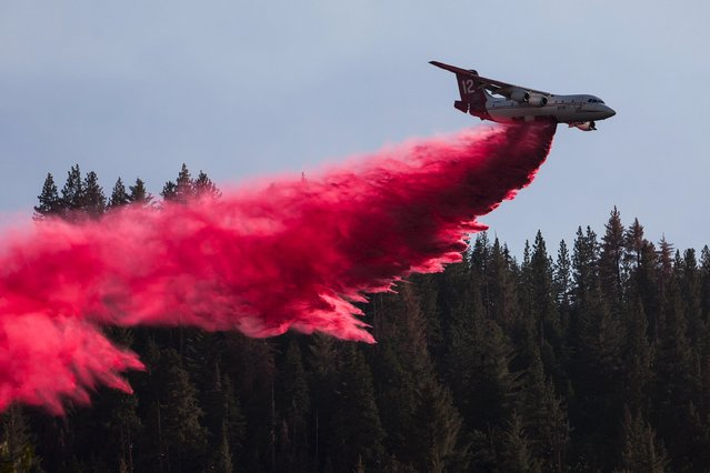 "A firefighting plane drops retardant ahead of the so-called ""Rough Fire"" in the Sequoia National Forest, California, August 21, 2015. (Photo by Max Whittaker/Reuters)"