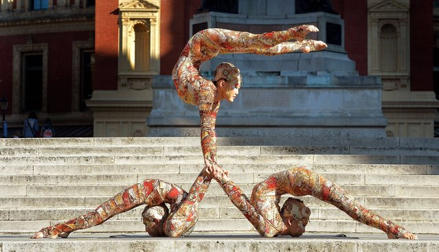 A trio of Mongolian contortionists from the Cirque du Soleil show Kooza show off their special skills on September 2, 2014, in front of the Royal Albert hall where the production will return for its annual limited run at the London venue from January 6, 2015. (Photo by John Stillwell/PA Wire)